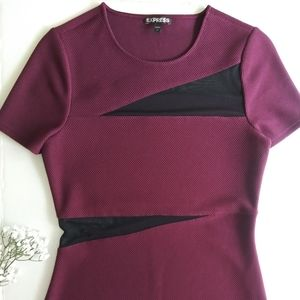 Express Maroon Dress with Mesh Details